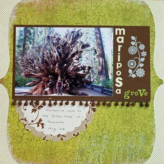 Mariposa-Grove-2